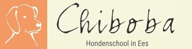 cropped-Hondenschool-Chiboba-in-Ees.jpg